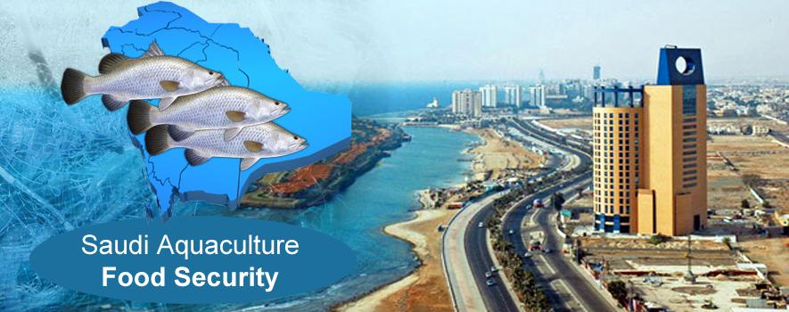 أهمية  قطـــاع الاستزراع المائي للمملكة  العربية السعودية