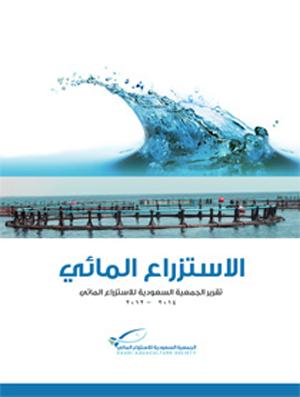 SAS Anual report 2012