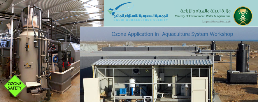 the benefits and applications of aquaculture in society Marine aquaculture (or farmed seafood) is vital for supporting our  economic,  and environmental benefits while supporting commercial and.