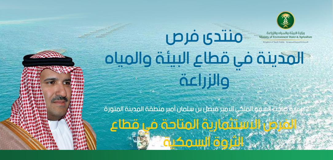 منتدى فرص المدينة في قطاع البيئة والمياه والزراعة