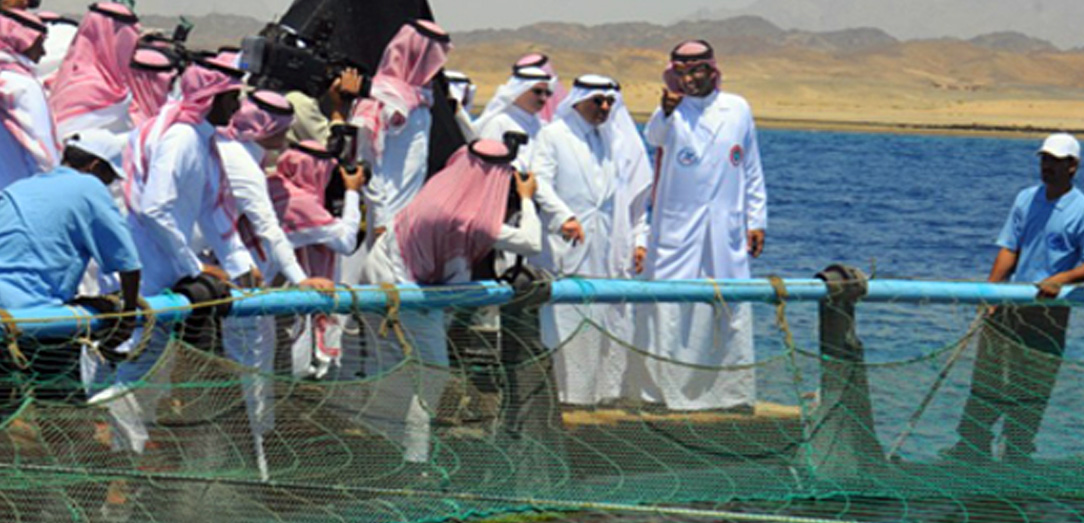 Emir of Tabuk opens number of projects of Tabuk Fish Company