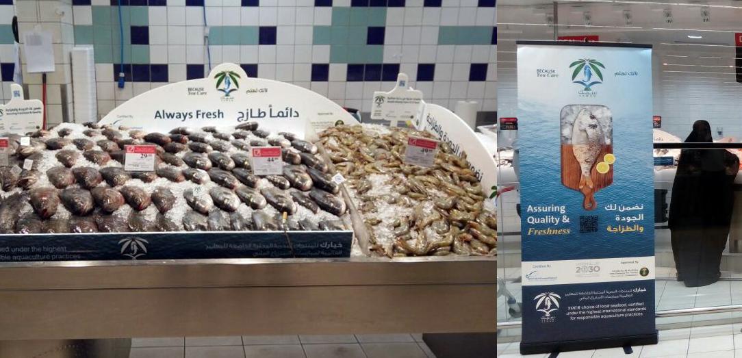 """تدشين حملة  """" سمك """" التي تهدف الى توعية المستهلك و تعزيز استهلاك المأكولات البحرية الصحية"""